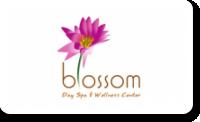 Blossom Day Spa & Wellness Center